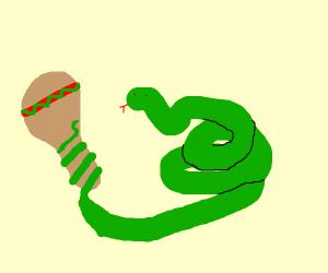 Snake with a maraca