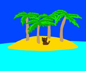 Sad dog on a desert island