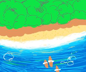 ocean land scape
