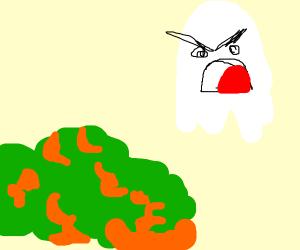 Angry ghost at bush