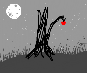 Leafless Tree with a lone apple