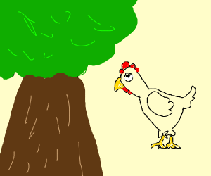 A chicken looking at a tree