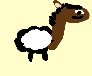 Horse mixed with a sheep