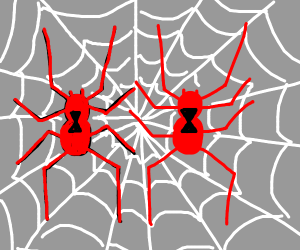 two anti-black widows in red spinning a web