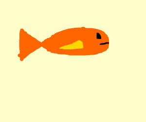 Orange fish with yellow fins