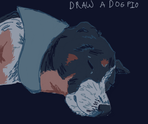 Draw a dog PIO