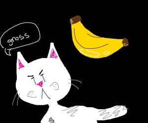 cat dislikes a shiny banana