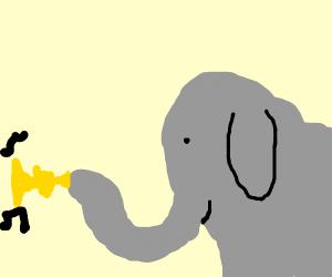 Elephant doors his trumpet