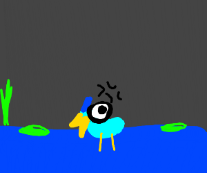 Angry Blue Duck at night