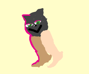 Cat with human legs and garters dances