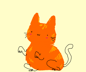 Kawaii orange cat