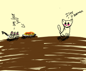 Sardines love spaghetti, cat loves you