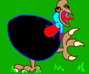 Cassowary shows off killer talons