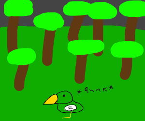 A duck in the woods