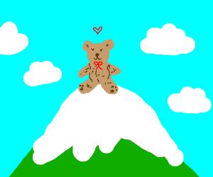 Adorable Teddy Bear on top of a mountain