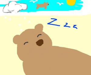 Dreamy Bear