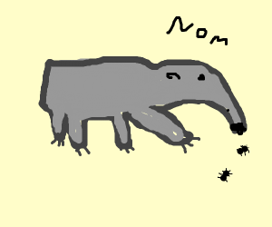 anteater ant-eats