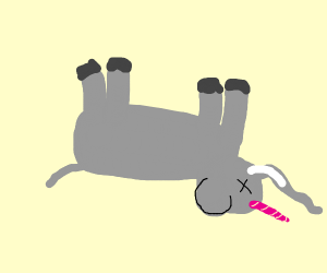 Rare unicorn elephant, dead