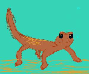 An adorable salamander
