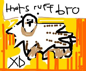 Rockruff being the best boi
