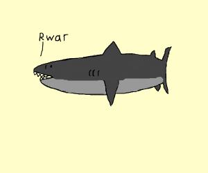 shark rwar