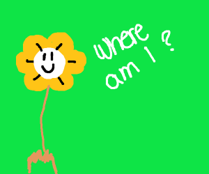 Undertale wondering where they are