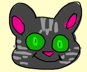 a grey cat with green eyes
