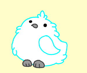 A floofy white snowy bird
