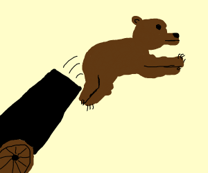 Shooting a bear out of the cannon.