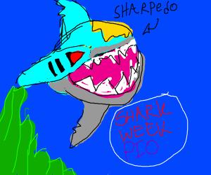 Shark Week PIO