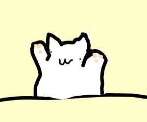 Bongo Cat needs medical assistance.