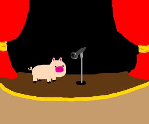 Pig plays at a concert