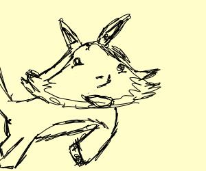 Very weird fox
