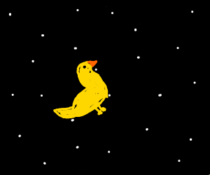 Duck in space