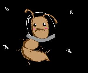 Ant-stronaut