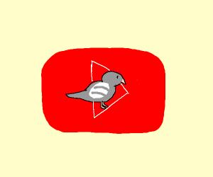 Pigeon-Tube