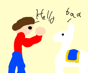 guy and llama talking