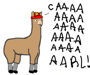 Llamas With Hats