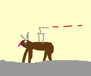 buffalo cries, licks air, shoots laser beams
