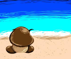 Goomba on beach