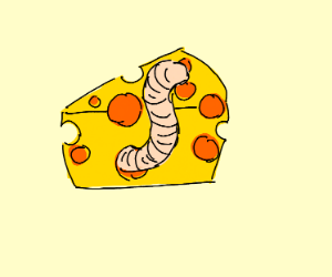 Worm slithering out of a piece of cheese