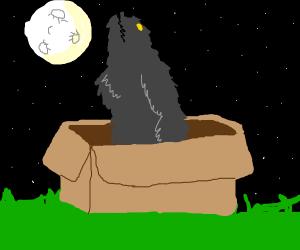 werewolf in a box