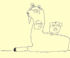 retiring llama