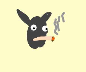 yo this rabbit smoke the epic weed