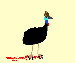 Scary cassowary
