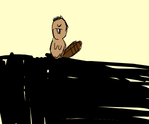 A beaver standing precariously on a wall