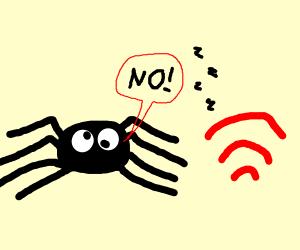 Da spider wont let no wi-fi sleep