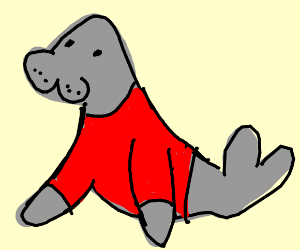 A seal with a red shirt