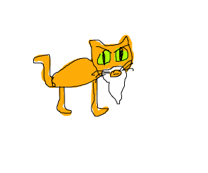 Cat with a beard