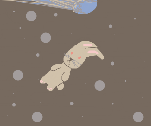 Rabbit flying through space